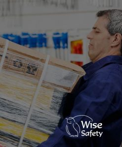 wise safety Manual Handling Training